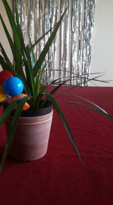 This plant is ready to party.